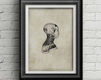 Anatomy  head print 021 - medicine poster - antique print - head illustration - medicine poster deco - ancient anatomy