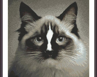 Cat ragdoll Stitch Pattern, Digital  Pdf , Just like a photo  Counted Cross Stitch pattern in PDF  format, Painting,