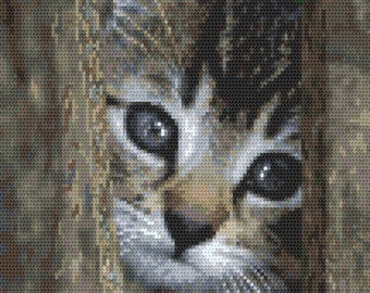 Little cat Stitch Pattern, Digital  Pdf , Just like a photo  Counted Cross Stitch pattern in PDF  format, Painting,  Easy