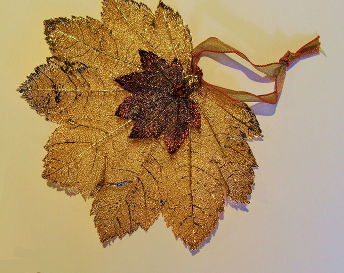 """Real Full Moon Maple Leaf Semi Transparent Coated in 24K Gold  5x 4"""" from the Still Life  Collection Hang for Christmas or Year Round"""