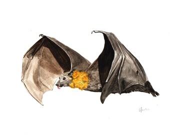 A5 Fruit Bat Watercolour Print - Original Handmade Art Print