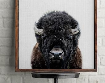 Buffalo Print, Buffalo Photography, Buffalo Nursery, Animal Print, Bison Wall Decor, Bison Print, Woodland Animals, Nursery Art, Buffalo Art