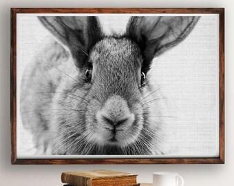 Rabbit Print, Bunny Print, Nursery Decor, Rabbit Wall Art, Black and White, Animal Print, Printable Art, Bunny Art Portrait, Wall Art Decor