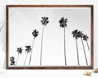 Black and White Palm Tree Print, Palm Trees Photo, Palms Wall Art, Tropical Wall Art, Tropical Art Decor, Palms, Palm Tree Photography Print