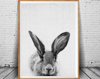 Rabbit Print, Bunny Print, Bunny Wall Art, Nursery Decor, Rabbit Wall Art, Black and White, Animal, Printable Art, Funny Bunny, Wall Art