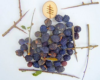 SALE!Blackthorn Sloe Berries From The West Country Of England- Dried For Crafting and Spell Workings