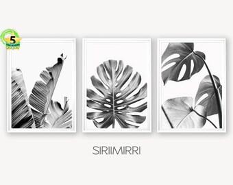 Set Of 3 Tropical Leaf Print Monstera Palm Banana Black White Leaves Printable Foliage Botanical Wall Art Digital Download