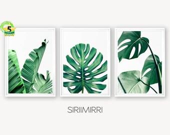 1045736cd21 Set of 3 Tropical Leaf Print Set Monstera Leaf Palm Banana Leaf Foliage  Green Leaves Wall Art Tropical Decor Botanical Coastal Art msuv