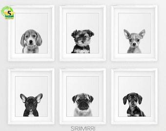 Dog Art Prints Etsy