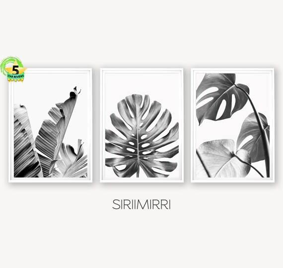 set of 3 tropical leaf print set monstera palm banana leaf etsy
