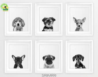 Set of 6 Prints Pug French Bulldog Beagle Chihuahua Dog Nursery Wall Art, Dog Portraits, Puppy Art Prints, Dog Prints, Nursery Animals Print