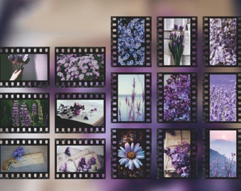 Bullet Journal Garden Camera Film 30 Pcs Blue Flowers Film Clear Sticker Scrapbooking Filofax Roll Photograph Floral Clear Sticker