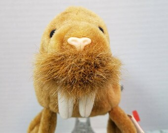 53ded5e83bc Retired Beanie Baby Paul the Walrus Birth Date February 23