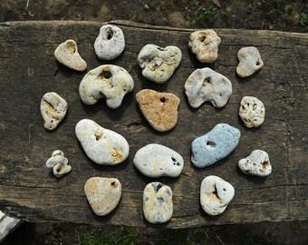 Witches Amulet Holey Stone Rocks Lot of Hag Stone Assortment N6 15 Natural Holed Variety of Sizes Stones Protection Stones