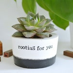 "New job meaningful gift ""rooting for you"" succulent planter"