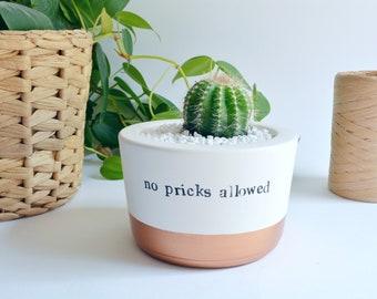 "Funny friendship gift ""no pricks allowed"" cactus pot desk decor"