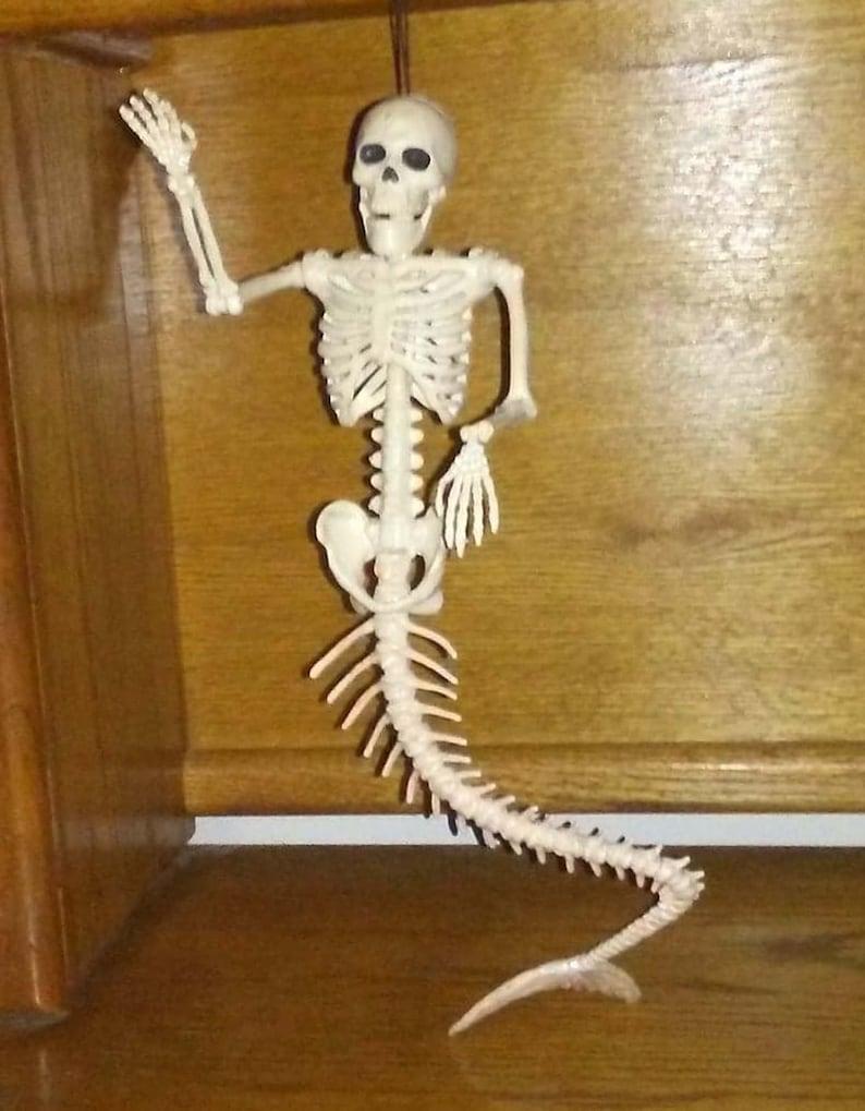 Skeleton Mermaid 21 Fish Bones Poseable Jaw Head Shoulder Elbow Wrist Tail New on Card Unique Gift Idea!