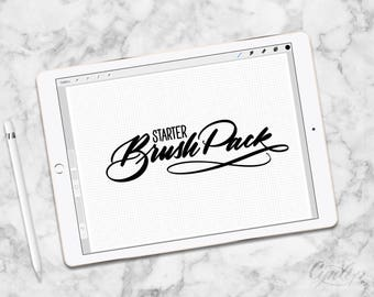 Starter Procreate Brush Pack, 6 Brushes and Grid & Graph,