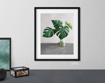 Monstera cutting in glass vase