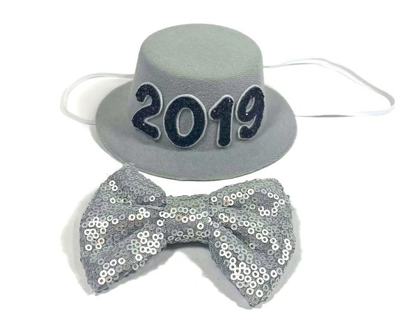 New Years Eve Hat || Dog Costume || 2019 || New Years || Party Hat || Top Hat || Silver Hat