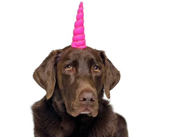 Dog Birthday Hat || Dog Unicorn Headband || Unicorn Headband for Dog || Pet Unicorn Costume || Dog Unicorn || Unicorn Dog