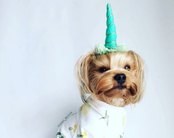Unicorn Horn Headband for Dog || Pet Unicorn Costume || Dog Unicorn || Unicorn Dog