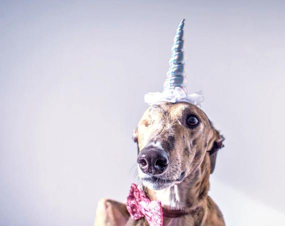 Unicorn Headband     Unicorn Costume    Dog Unicorn    Unicorn Dog    Pet Dress Up
