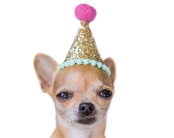 Dog Birthday || Dog Party Hat || Dog Costume || Dog Birthday Party || Cat Birthday Hat