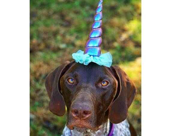 Dog Unicorn Costume || Dog Unicorn Headband || Unicorn Headband for Dog || Pet Unicorn Costume || Dog Unicorn || Unicorn Dog