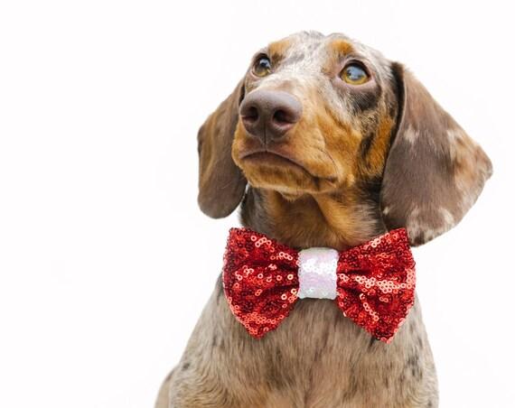 Pet Christmas Bow || Christmas Dog Bow || Bow Headband || Dog Christmas Bow || Christmas Puppy || Pet Christmas Gift