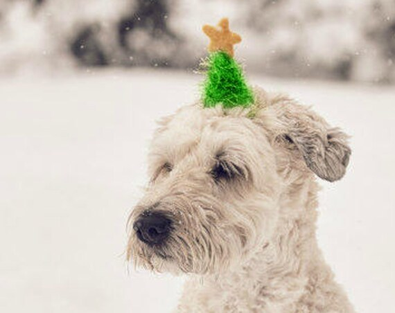 Christmas Hat || Christmas Tree Hat || Animal Hat || Dog hat || Holiday Accessory