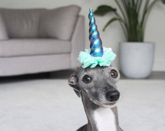 Mini Unicorn Horn || Dog Unicorn Headband || Unicorn Headband for Dog || Pet Unicorn Costume || Dog Unicorn || Unicorn Dog