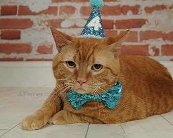 Cat Birthday Hat And Large Bow Tie