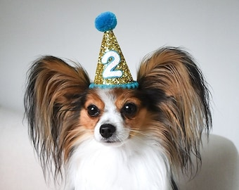 Dog Birthday Party Outfit