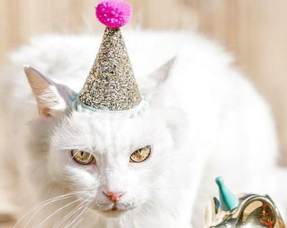 Cat Costume || Cat Birthday Hat || Cat || Cat Crown || Cat Costumes || Party Hat
