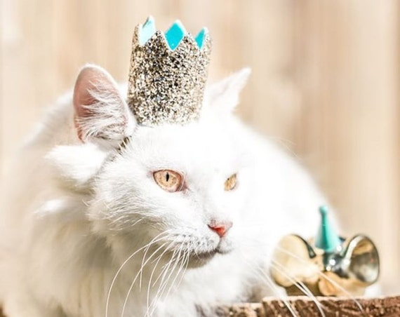Kitty Crown || Cat Birthday Crown Hat || Animal Birthday Hat
