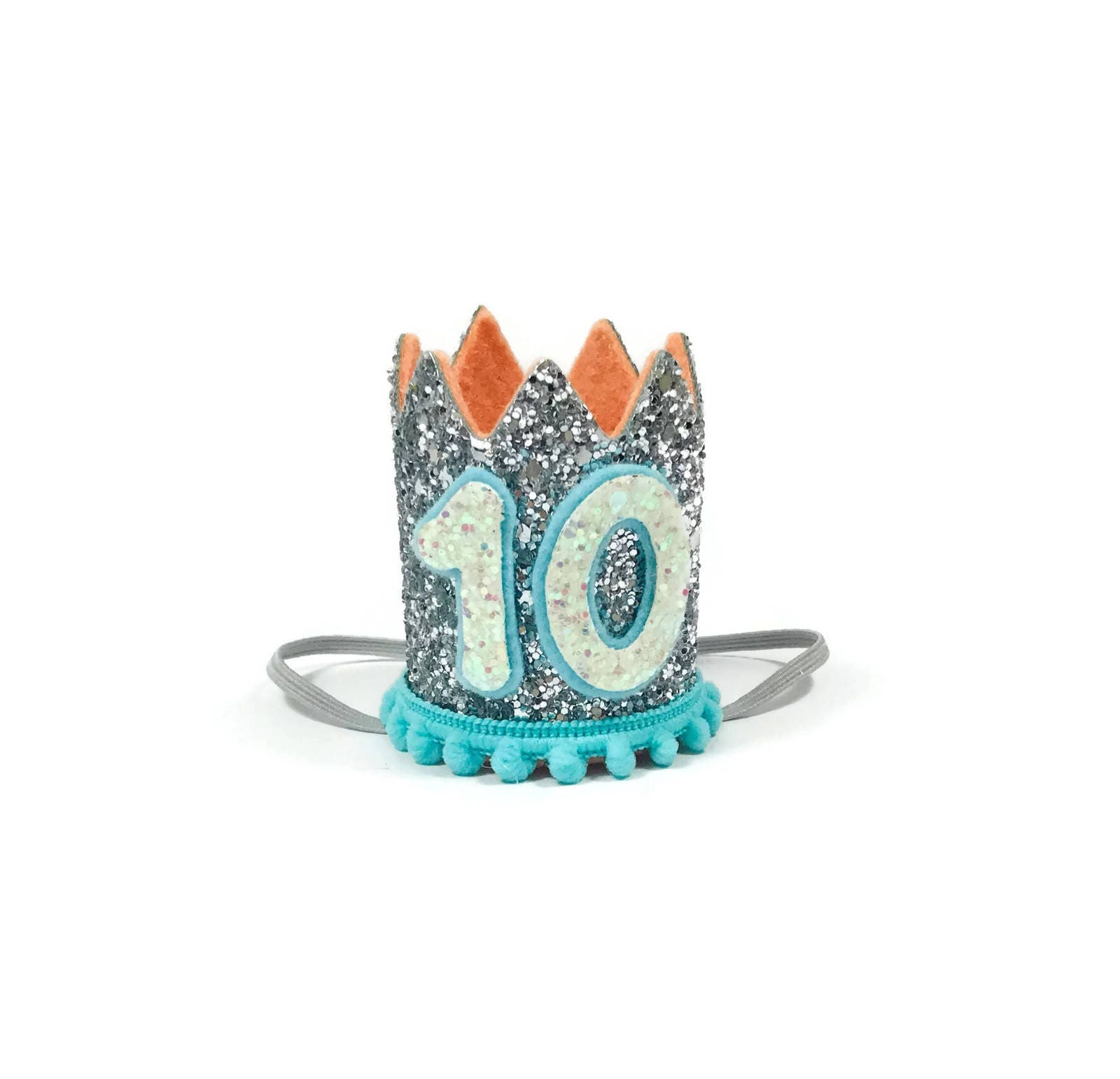 10th Birthday Crown Any Age Dog Hat Pet