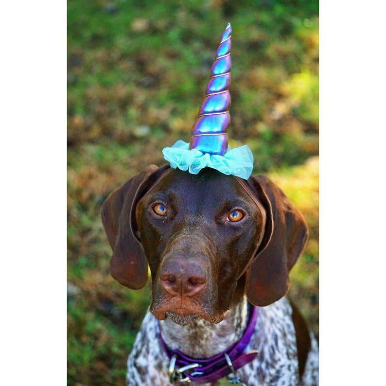 Dog Unicorn Costume Dog Unicorn Headband Unicorn Headband for Dog  c89fbe2360f
