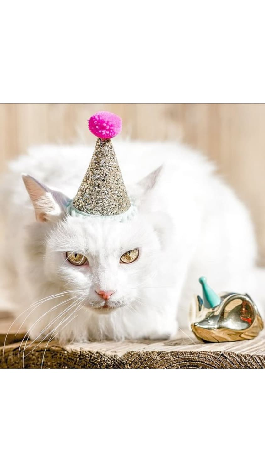 Cat Costume Birthday Hat Crown