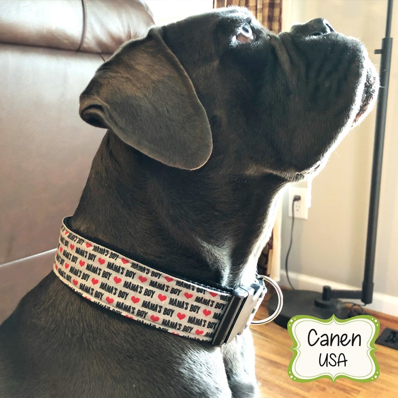 Dog Collar Mamas Boy By Gbpups Martingale Collar Buckle Etsy