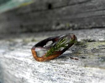 Juniper bark ring, Nature forest ring, Men women wood ring, resin juniper wooden ring, men bentwood ring, Juniper wedding rings, Wooden gift