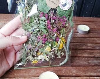 Pressed Meadow Flowers and Grasses / Pressed Meadow Flowers for Craft