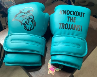 Customized Boxing Gloves and Satin Boxing Robe