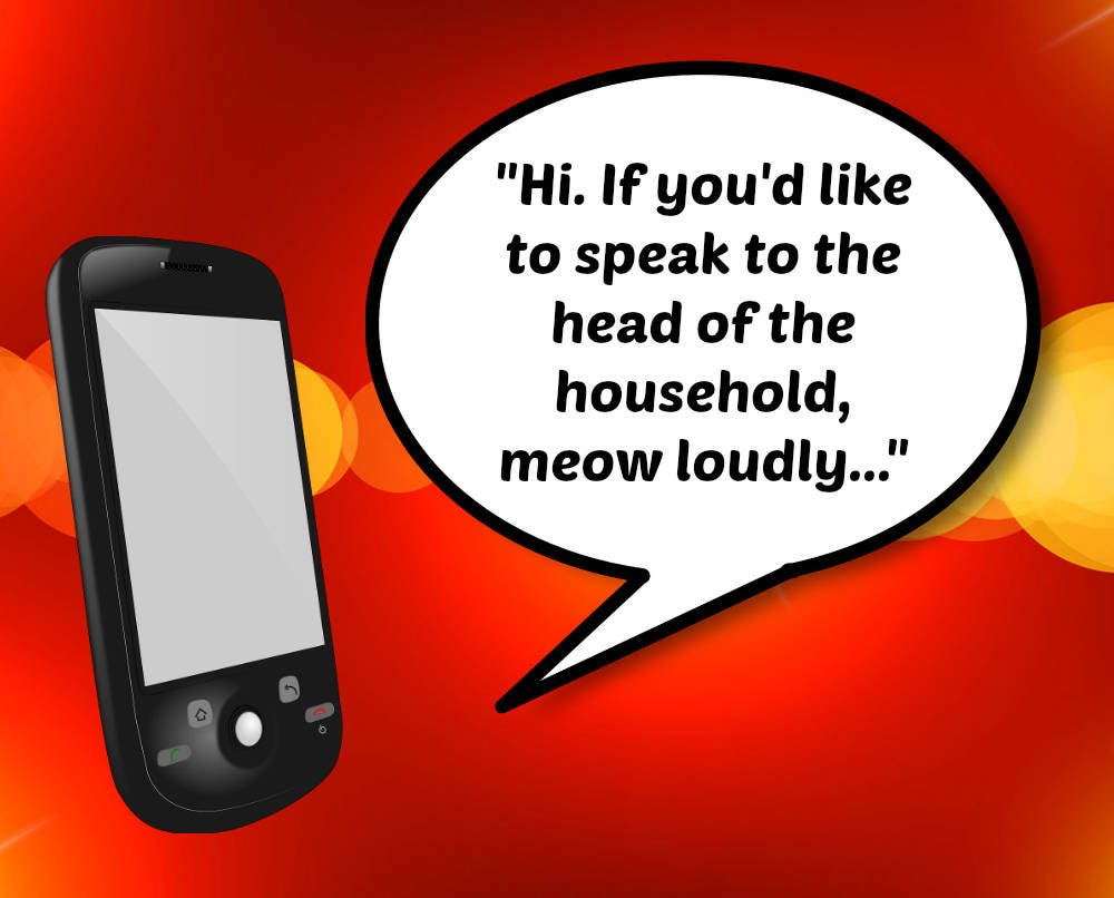 Funny Voicemail Greeting Meow Loudly Male Cat