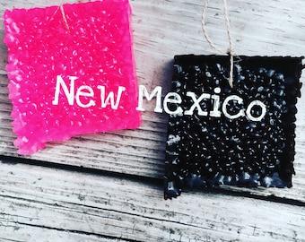 NEW MEXICO Aroma Bead Air Freshener Car Scent The Krazy Kactus