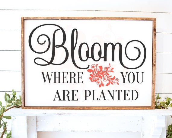 Svg Dxf Png Bloom Where You Are Planted Svg Floral Svg Etsy