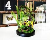Artificial plants forest terrarium, Cabinet of curiosities, dome Bell glass gift anniversary wedding, garden table decor