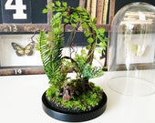 Artificial plants forest terrarium, Cabinet of curiosities, dome Bell glass, birthday gift wedding, Garden decor