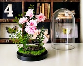 Terrarium flower composition of artificial plants, Cabinet of curiosities, gift, glass cloche dome cherry birthday wedding