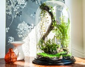 Artificial plants, Cabinet of curiosities, Globe dome terrarium Bell glass gifts anniversary wedding, vintage decor